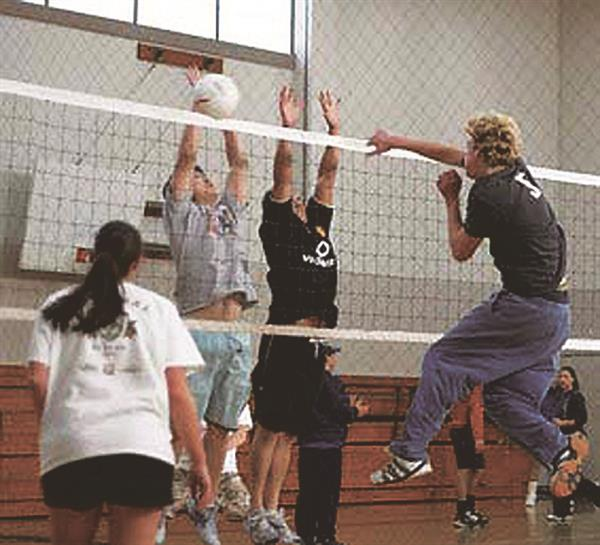 Adult Sports / Co-ed Volleyball